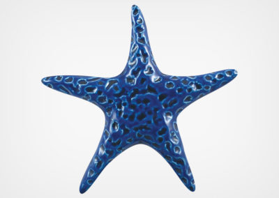 Starfish Smooth – Royal Blue – 5×5