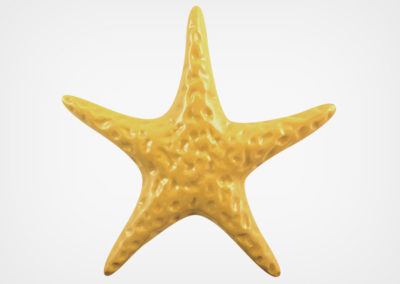 Starfish Smooth – Sand – 5×5
