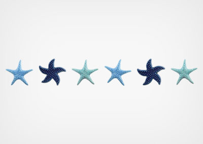 Starfish Blend – Step Marker – Blue – 24×3