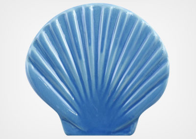 Seashell – Blue – 4×5
