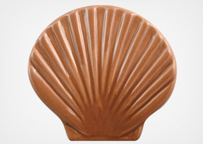 Seashell – Brown – 4×5