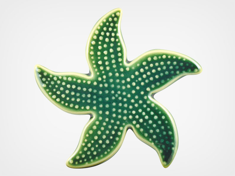 Starfish Spotted – Teal – 5×5