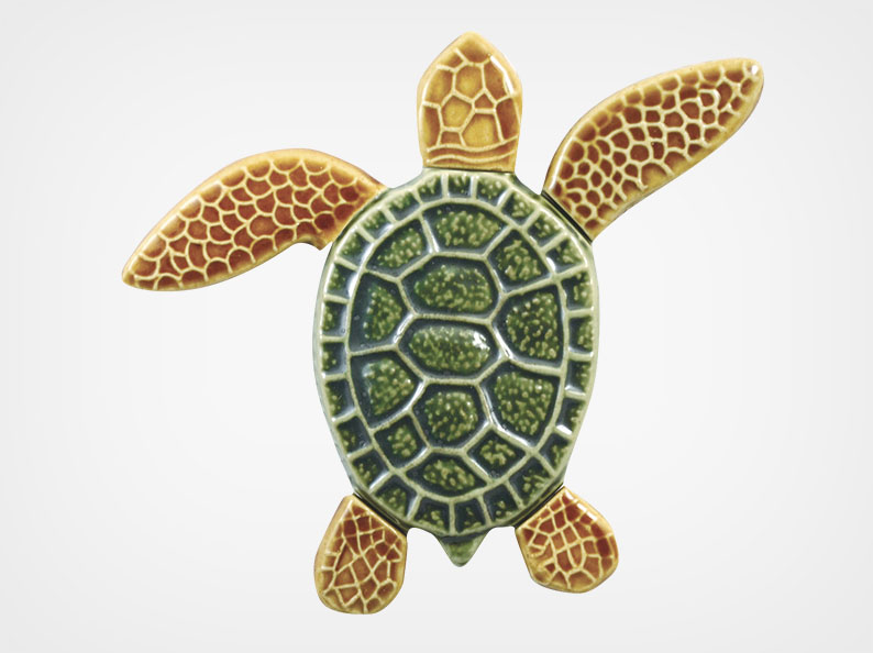 Turtle Right Up – Multi – 5×5