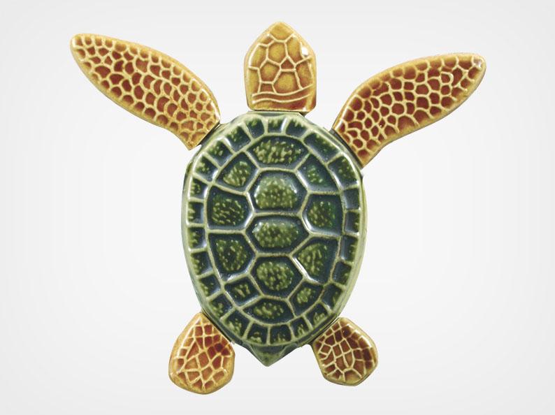Turtle Both Up – Multi – 5×5