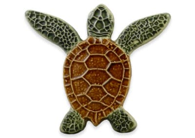 Turtle Both Up – Natural – 5×5