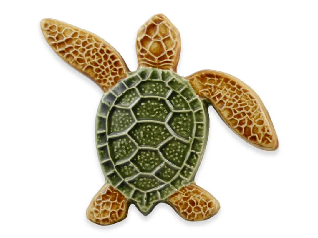 Turtle Left Up – Multi – 5×5