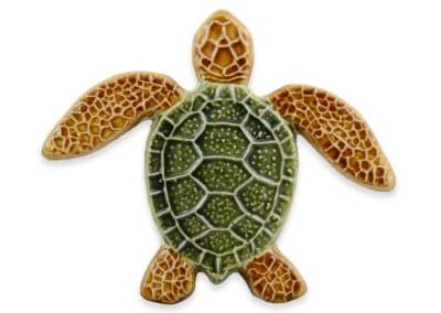 Turtle Straight – Multi – 5×5